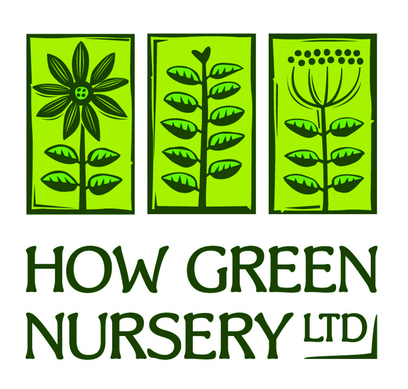 How Green Nursery Ltd