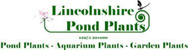 Lincolnshire Pond Plants